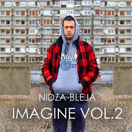 Imagine Vol 2 von Nidza Bleja