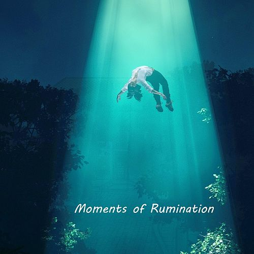 Moments of Rumination by Marc Hess