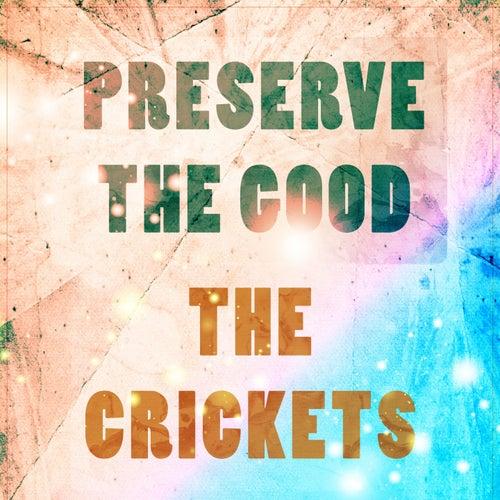 Preserve The Good de Bobby Vee