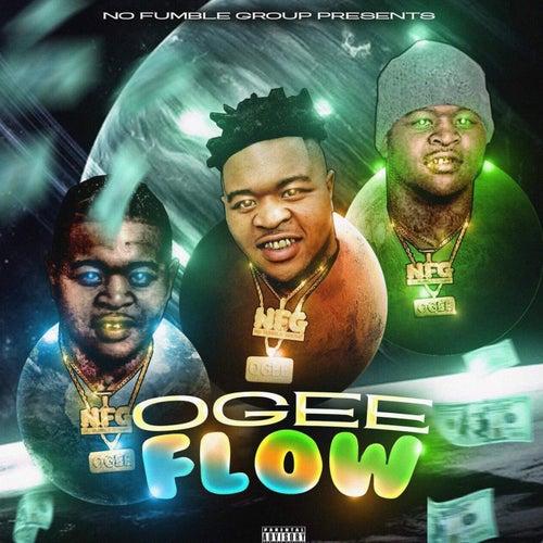 Ogee Flow de Ogee