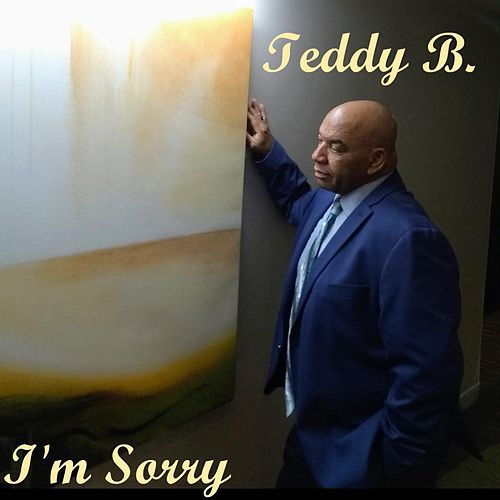 I'm Sorry by Teddy B!