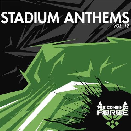 Stadium Anthems Vol.12 (Radio Edits) von Various Artists