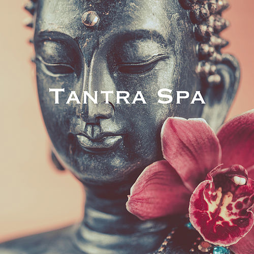 Tantra Spa by Various Artists