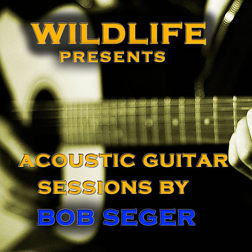 Acoustic Guitar Melodies: Bob Seger de Wildlife