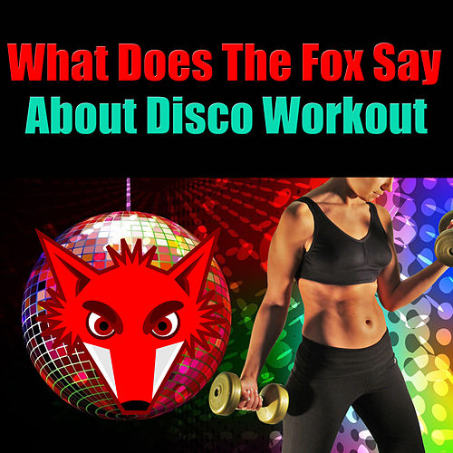 What Does The Fox Say About Disco Workout by Various Artists