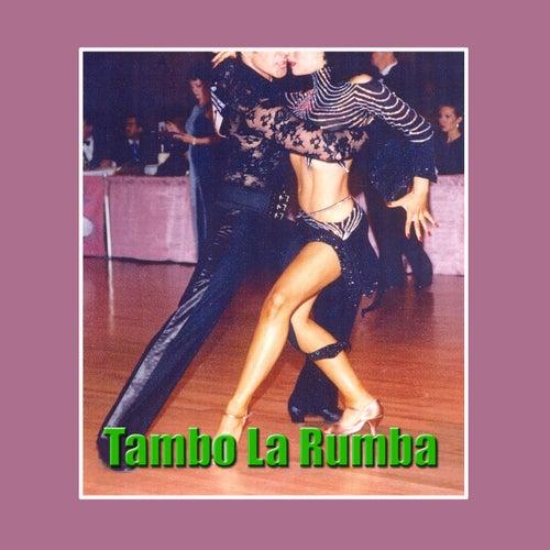 Tambo La Rumba by Various Artists