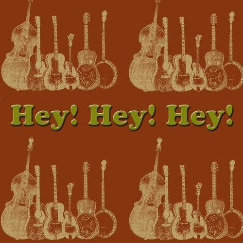 Hey! Hey! Hey! de The Stanley Brothers