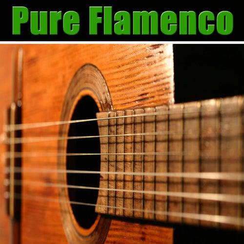 Pure Flamenco by Carlos Montoya