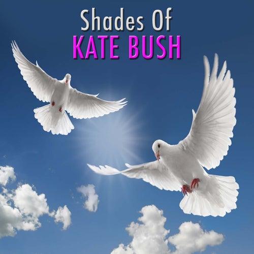 Shades Of Kate Bush de Wildlife