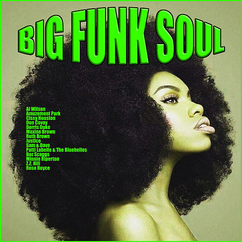 Big Funk Soul by Various Artists