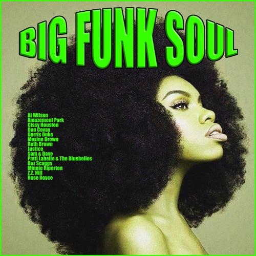Big Funk Soul de Various Artists