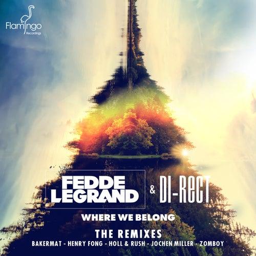 Where We Belong (The Remixes) von Fedde Le Grand