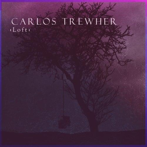 Loft de Carlos Trewher