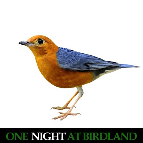 One Night at Birdland (Live) de Bud Powell