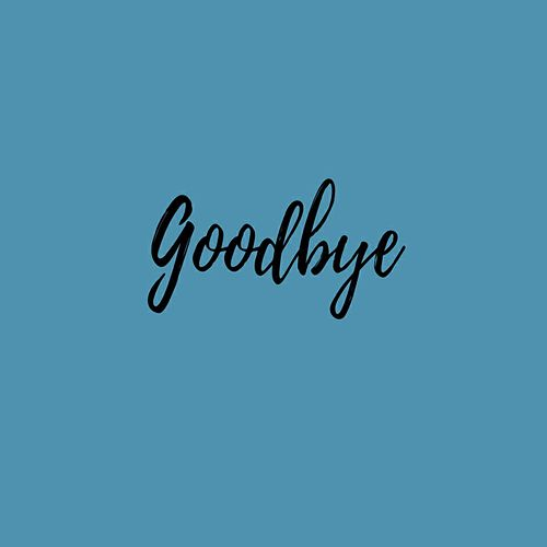 Goodbye by Salty