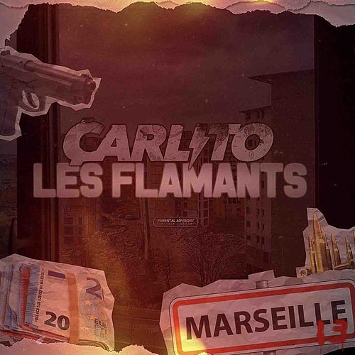 Flamants de Carlito