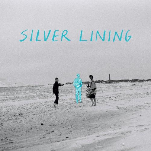 Heart and Mind Alike von Silverlining