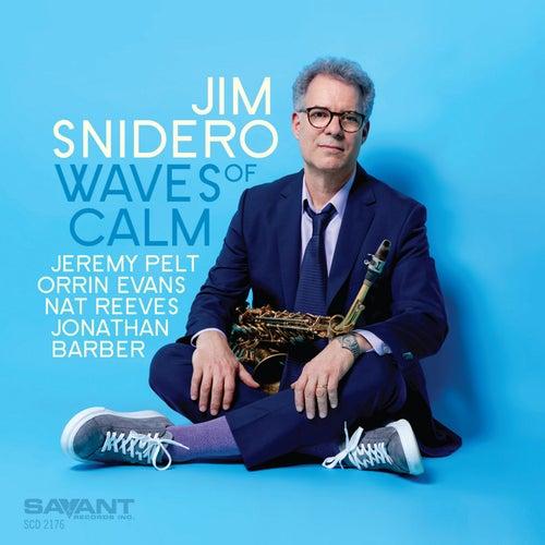 Waves of Calm von Jim Snidero