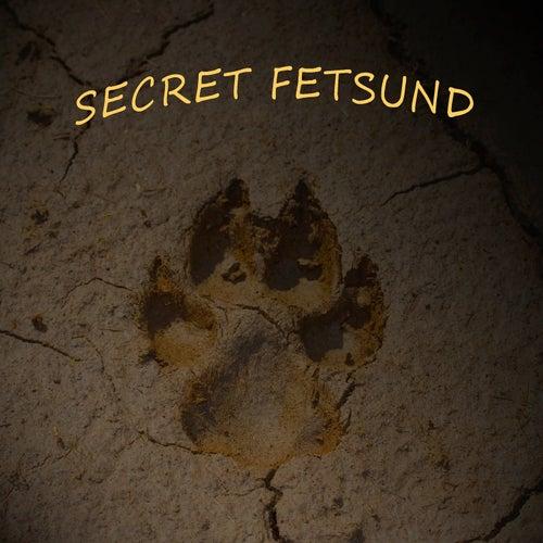 Fetsund Airport by Secret Fetsund