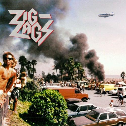 Punk Fucking Metal by Zig Zags