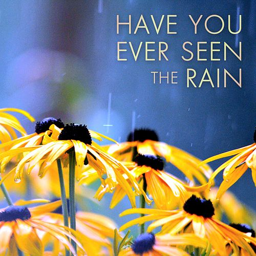 Have You Ever Seen the Rain by Steve Pulvers