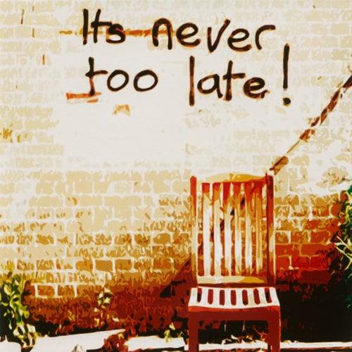 It's Never Too Late! de Nine Below Zero