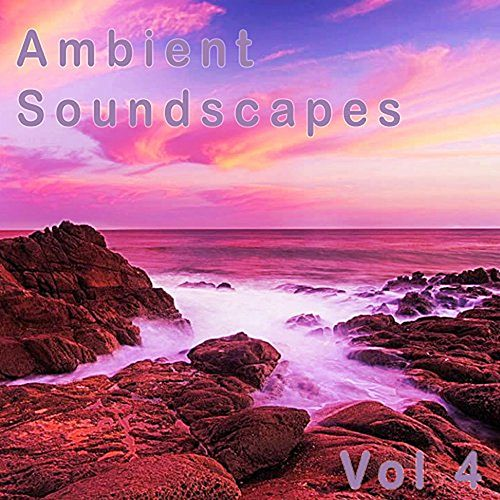 Ambient Soundscapes: Vol  4 by Amanda Lee Falkenberg