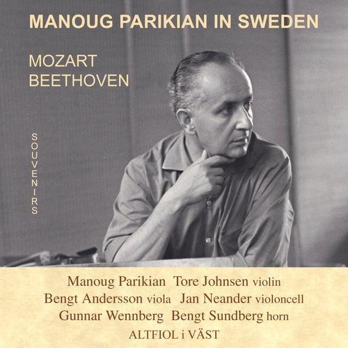 Manoug Parikian in Sweden von Manoug Parikian