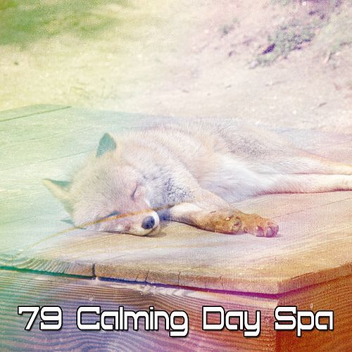 79 Calming Day Spa by Trouble Sleeping Music Universe