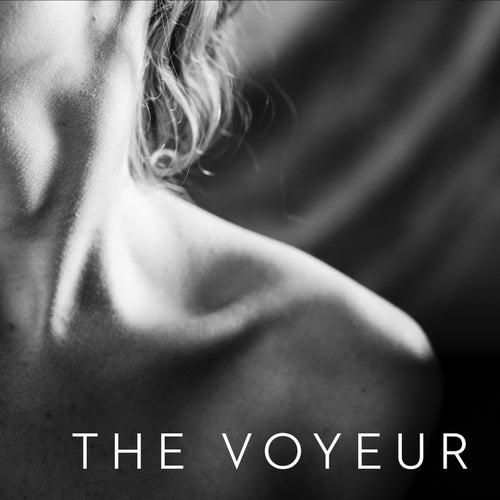 The Voyeur by Charles Van Kirk