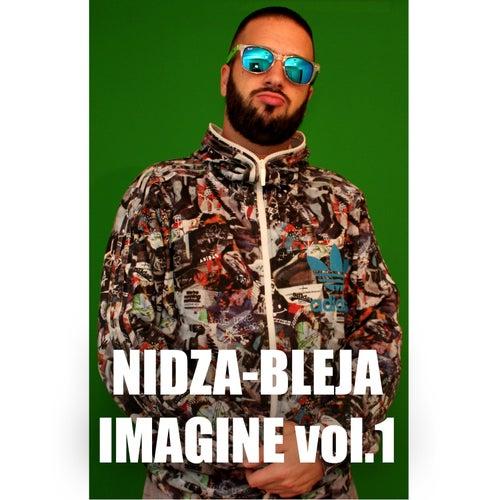 Imagine Vol.1 von Nidza Bleja