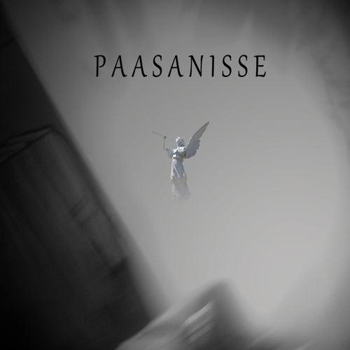 Cosmogenesis by Paasanisse