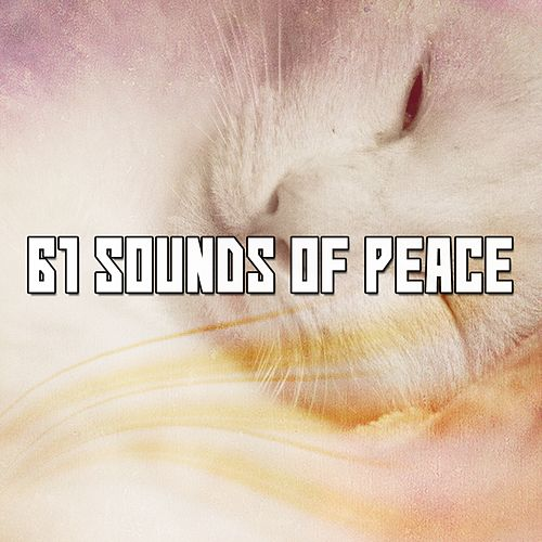 61 Sounds Of Peace de Ocean Sounds Collection (1)