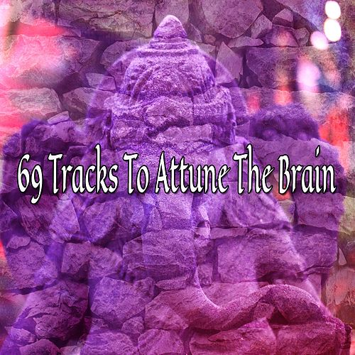 69 Tracks To Attune The Brain de Meditación Música Ambiente