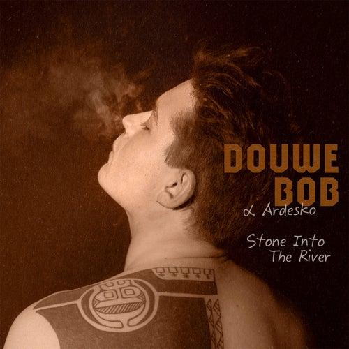 Stone Into The River (Radio Edit) by Douwe Bob