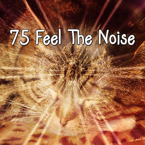 75 Feel The Noise de Water Sound Natural White Noise