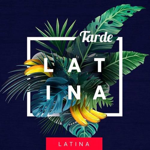 Tarde Latina de Various Artists