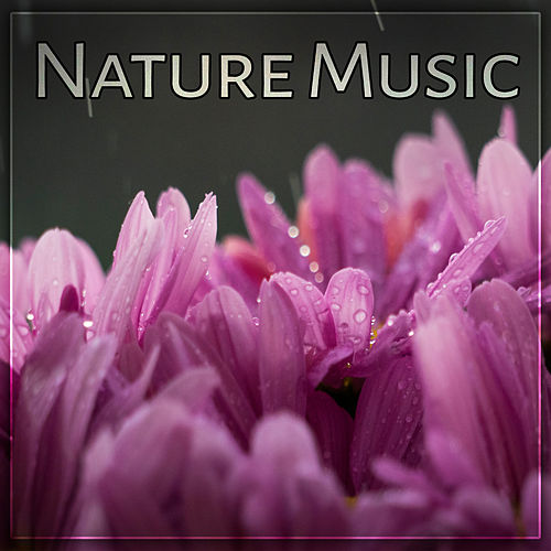 Nature Music – Fabulous Nature Sounds of Birds and Ocean Waves, Relaxing Music for Total Rest, Calming Sounds of New Age Music de Nature Sounds Artists
