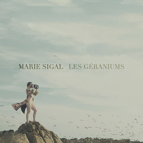 Les géraniums by Marie Sigal