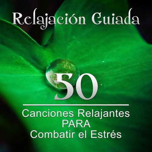Relajación Guiada: 50 Canciones Relajantes para Combatir el Estrés y Control de la Ira, Meditación Profunda para Relajar la Mente y Sanar el Alma de Meditación Música Ambiente