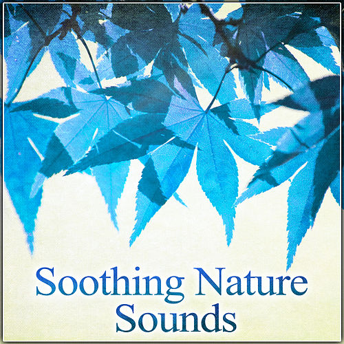 Soothing Nature Sounds – Calming and Soothing Nature Sounds de Nature Sounds Artists