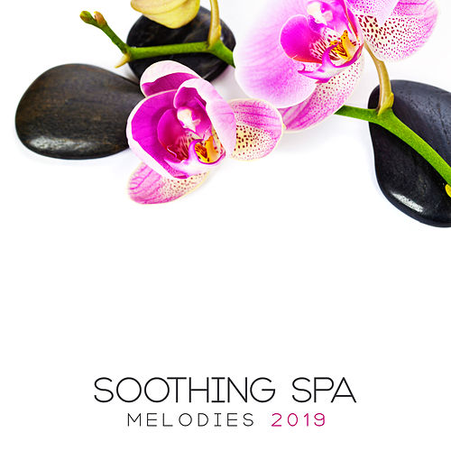 Soothing Spa Melodies: Music for Therapeutic Treatments of Massage, Bathing and Relaxation by Ambient Music Therapy