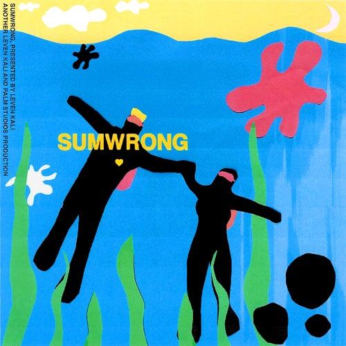 Sumwrong von Leven Kali
