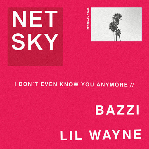 I Don't Even Know You Anymore by Netsky