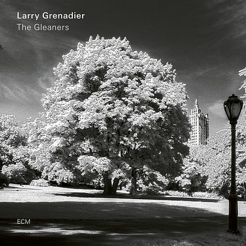 The Gleaners by Larry Grenadier