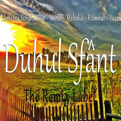 Imnul Duhului Sfânt (Muzica Crestina Romaneasca din Cantarea Scripturilor) by Luz
