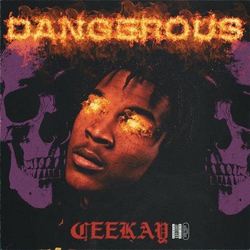 Dangerous von Cee Kay