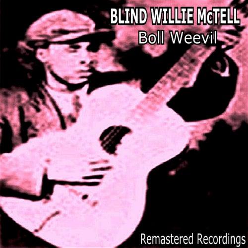 Boll Weevil de Blind Willie McTell