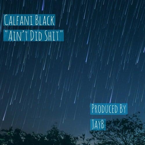 Ain't Did Shit by Calfani Black