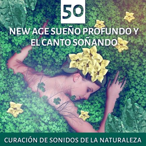 50 New Age Sueño Profundo y el Canto Soñando: Curación de Sonidos de la Naturaleza, Terapia del Yoga, Música de Spa por el Poder de la Belleza, Buena Comida para el Cuerpo y el Alma, Curación Natural del Insomnio de Various Artists